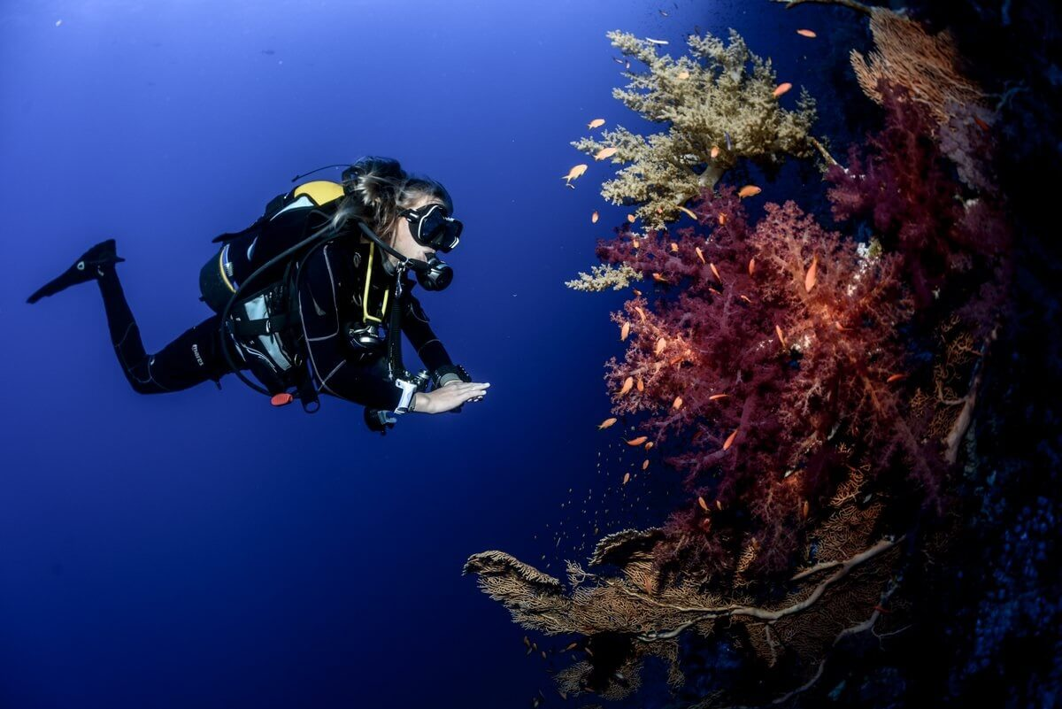 Cours de plongée profonde